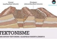 pengertian-tektonisme